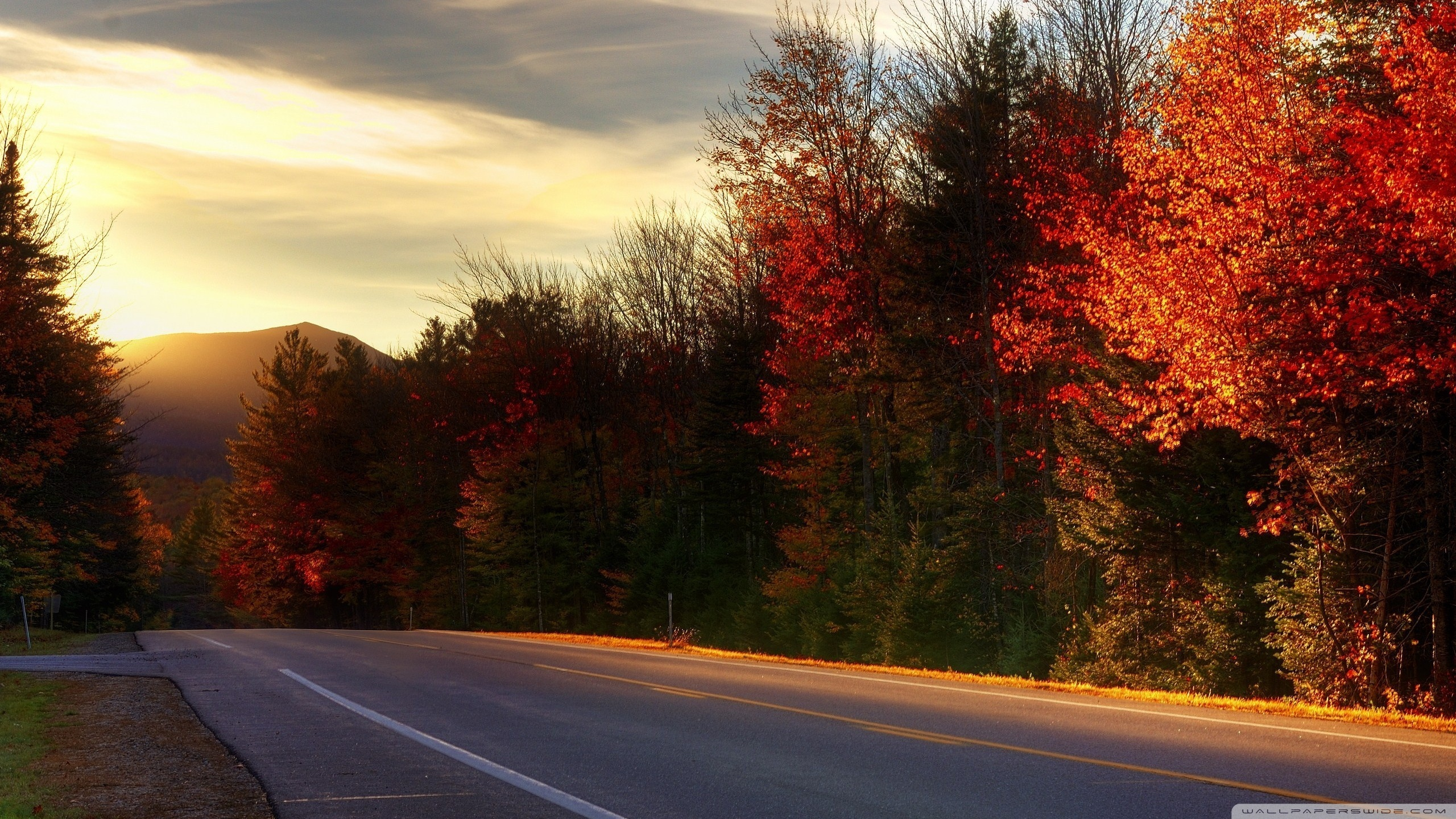 Road In New Hampshire 4K HD Desktop Wallpaper for 4K Ultra HD 2560x1440