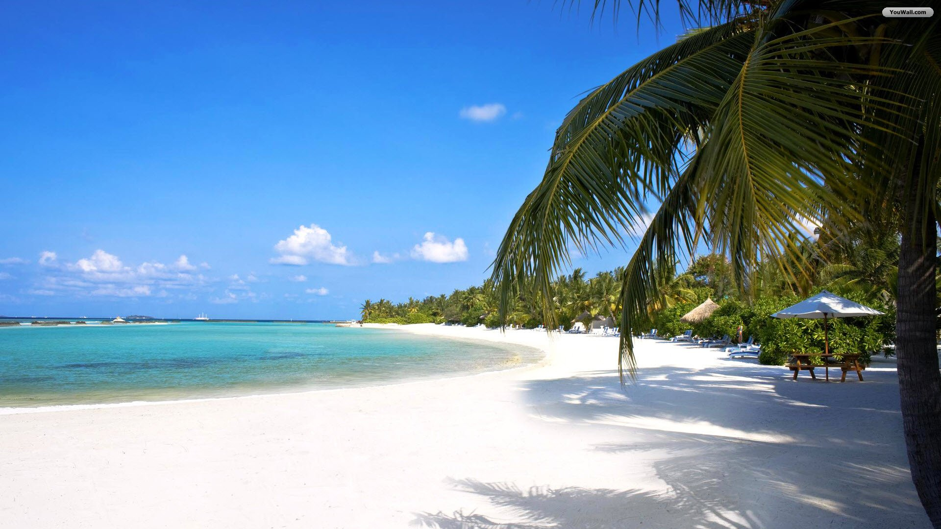 Amazing Tropical Beach Wallpaper   wallpaperwallpapersfree wallpaper 1920x1080