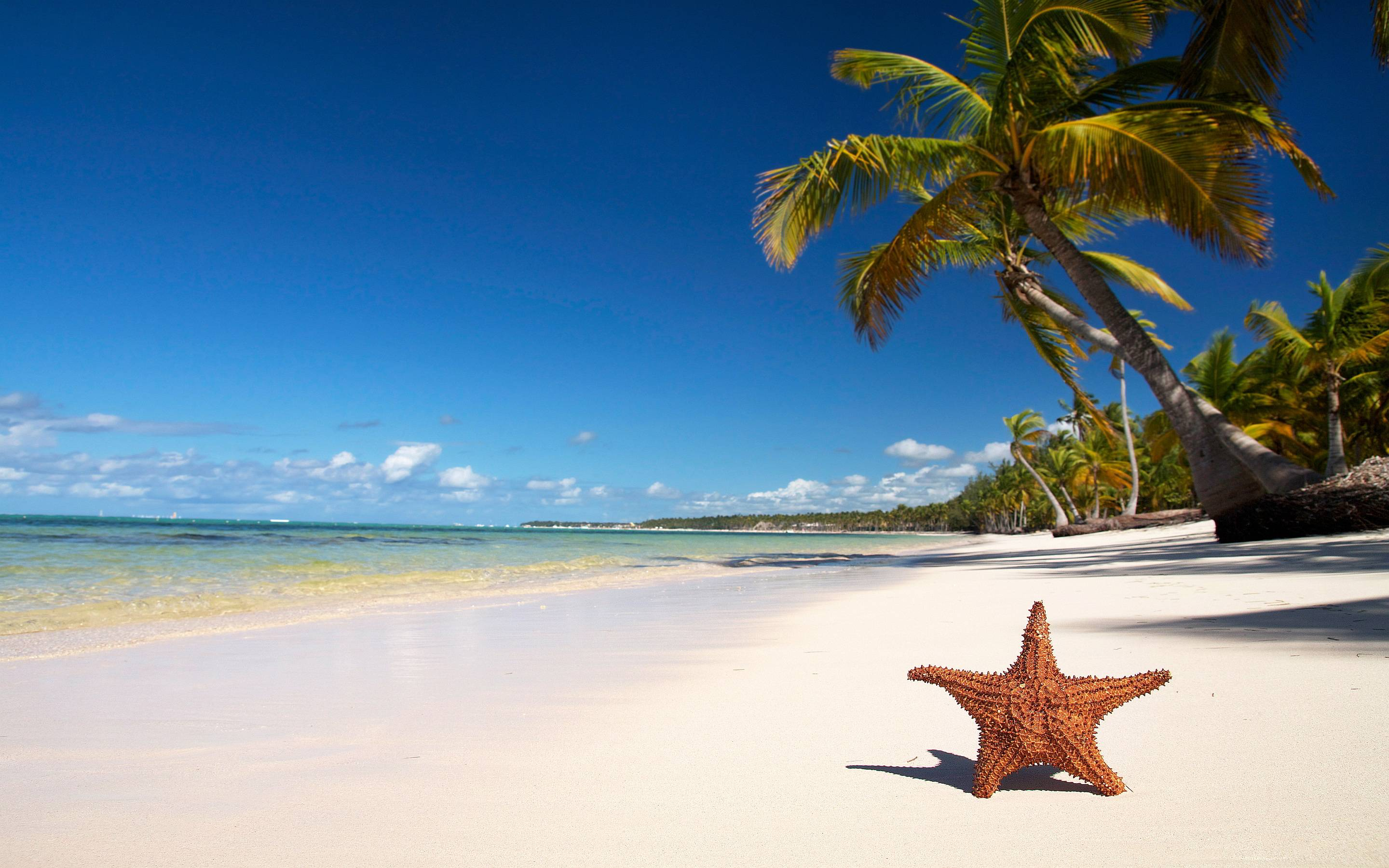 Tropical Beach Pictures Wallpapers 2880x1800