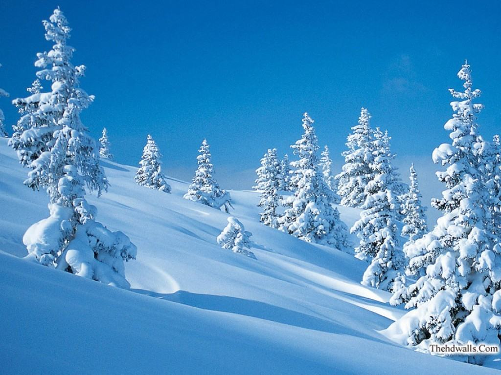 Cool Winter Wallpaper