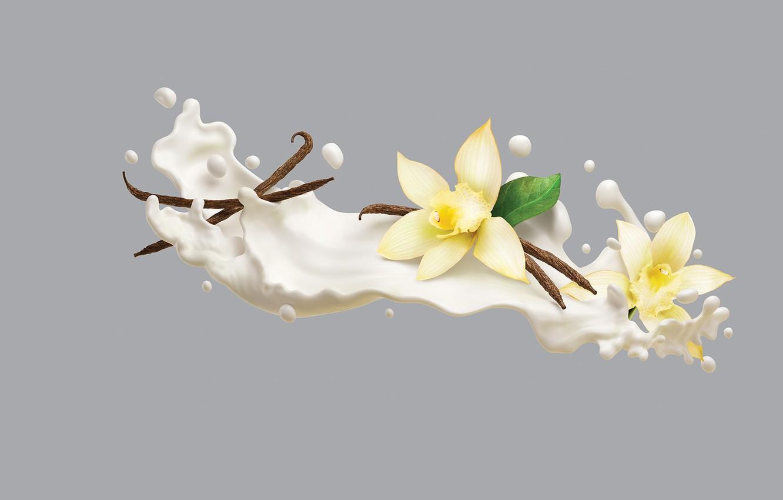 Wallpaper minimalism cream art vanilla AJ Jefferies 1332x850