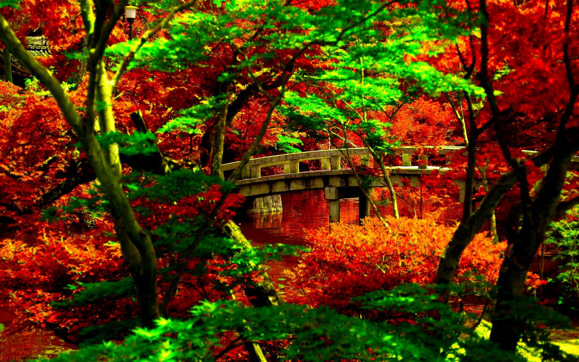 [45+] Japanese Garden HD Wallpaper On WallpaperSafari