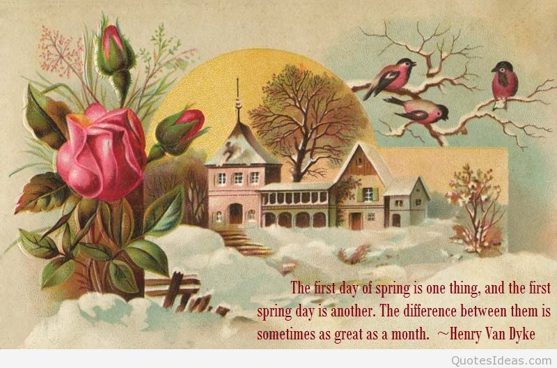 First day of spring quotes wallpapers and flowers photos 800x528