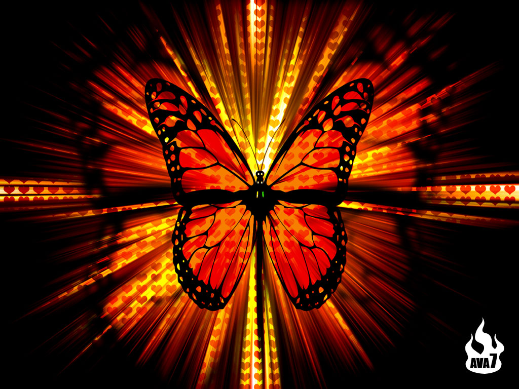 Butterfly Wallpaper 3D Wallpaper Nature Wallpaper Download 1024x768