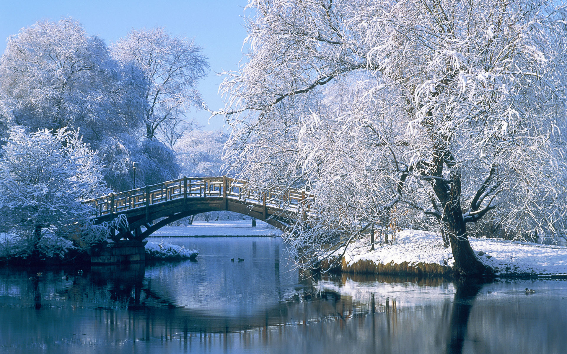 winter park schnee brcke see lake snow bridge wallpaper 1920x1200 1920x1200