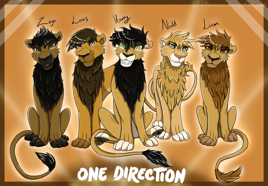 One Direction One Direction Lions 900x627
