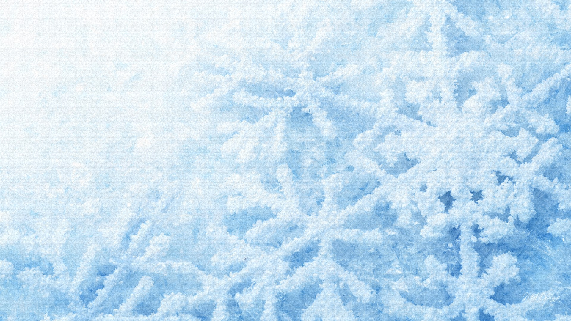 Free Download Snowflake 1080p Wallpaper High Definition High Quality 1920x1080 For Your Desktop Mobile Tablet Explore 73 Snowflake Wallpaper Snow Pictures Wallpaper