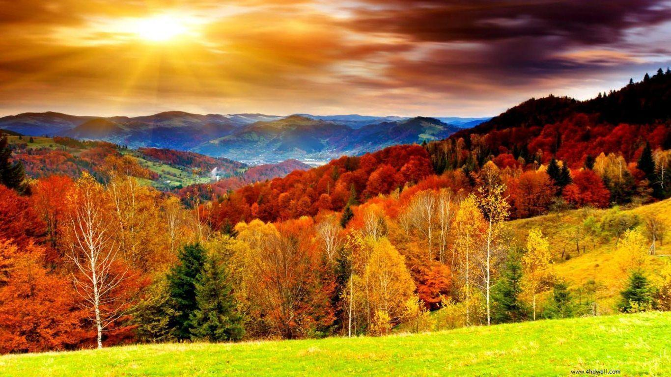 Autumn Wallpapers HD 1366x768