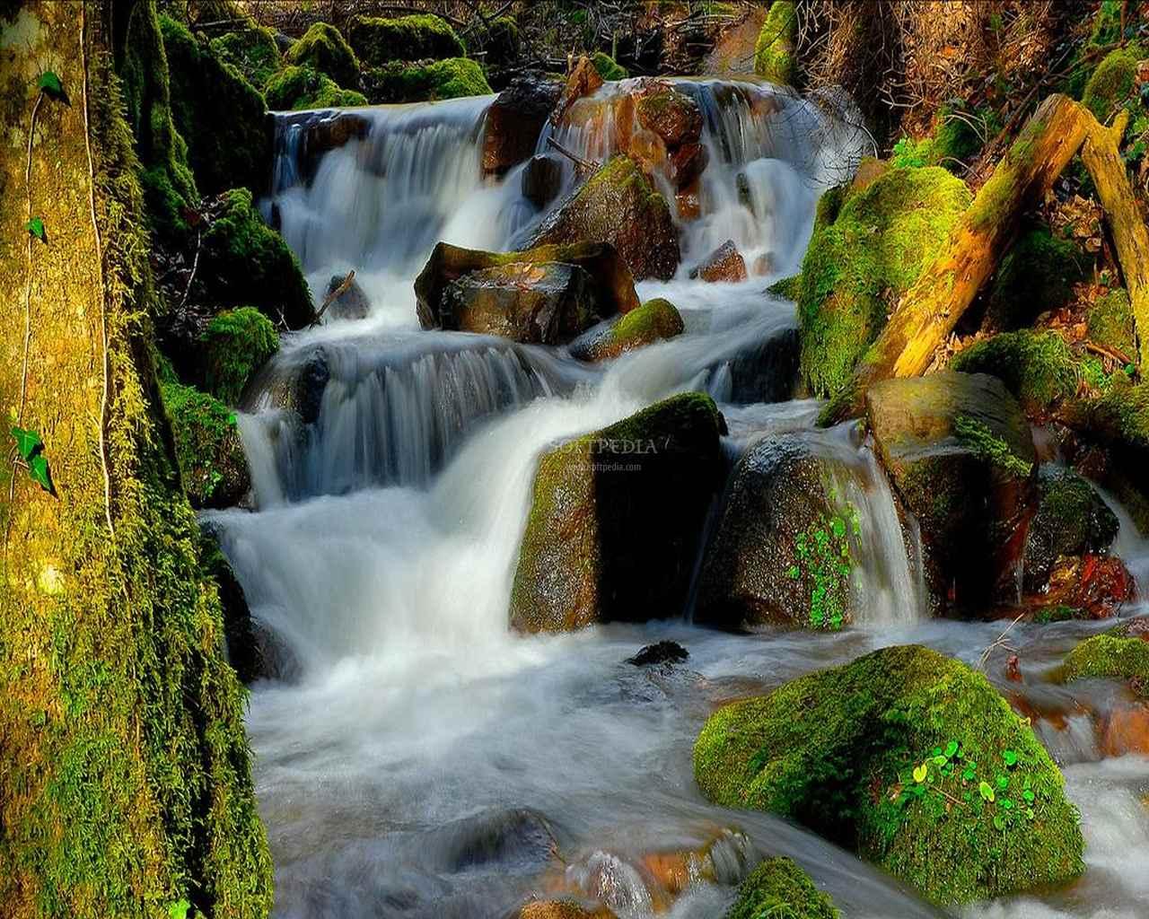 Freebking Waterfall Screensaver   Freebking Waterfall Screensaver 1280x1024