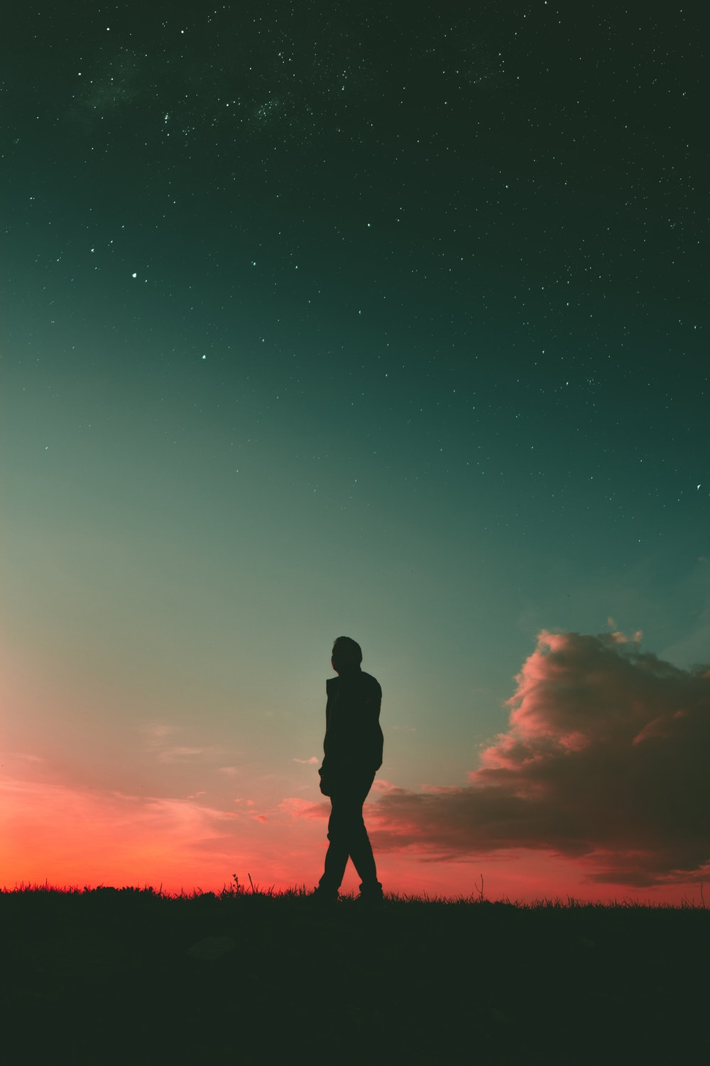 500 Silhouette Pictures [HD] Download Images on Unsplash 1000x1500