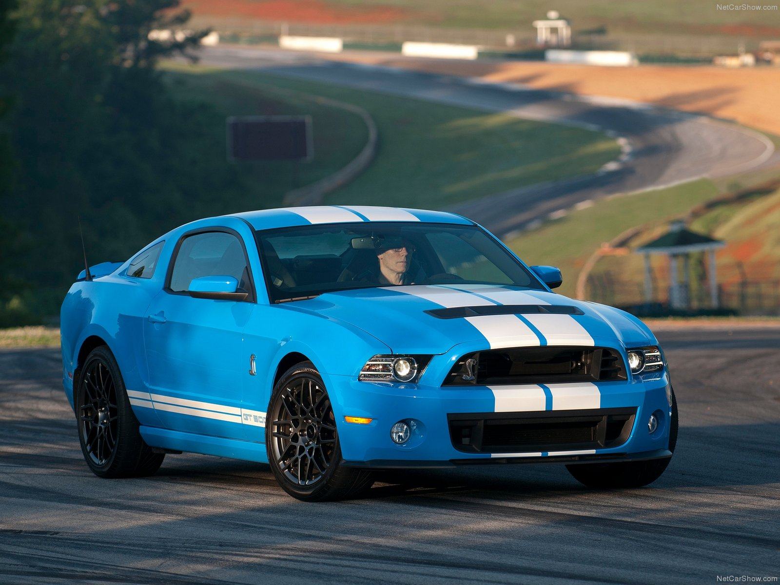 Ford Mustang Shelby GT500 2013 wallpaper 1600x1200 222114 1600x1200