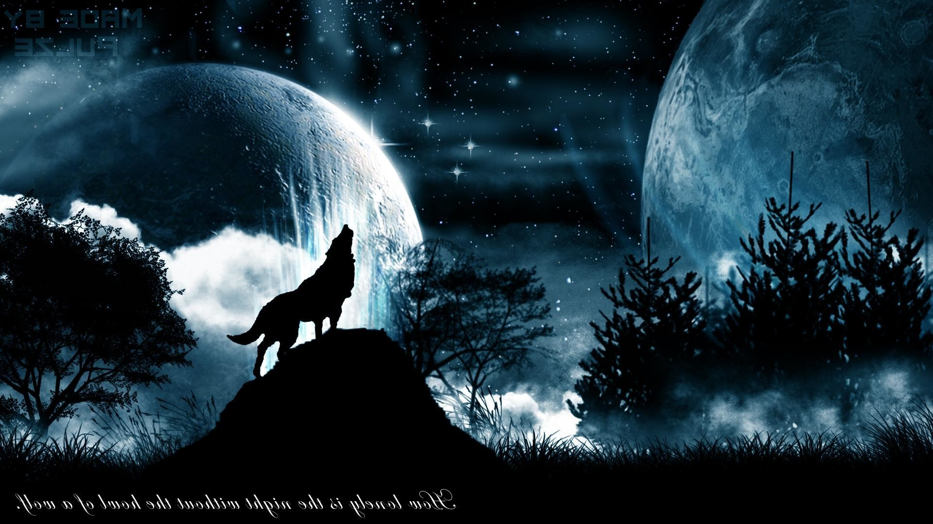 32 Wolves Howling Wallpapers On Wallpapersafari