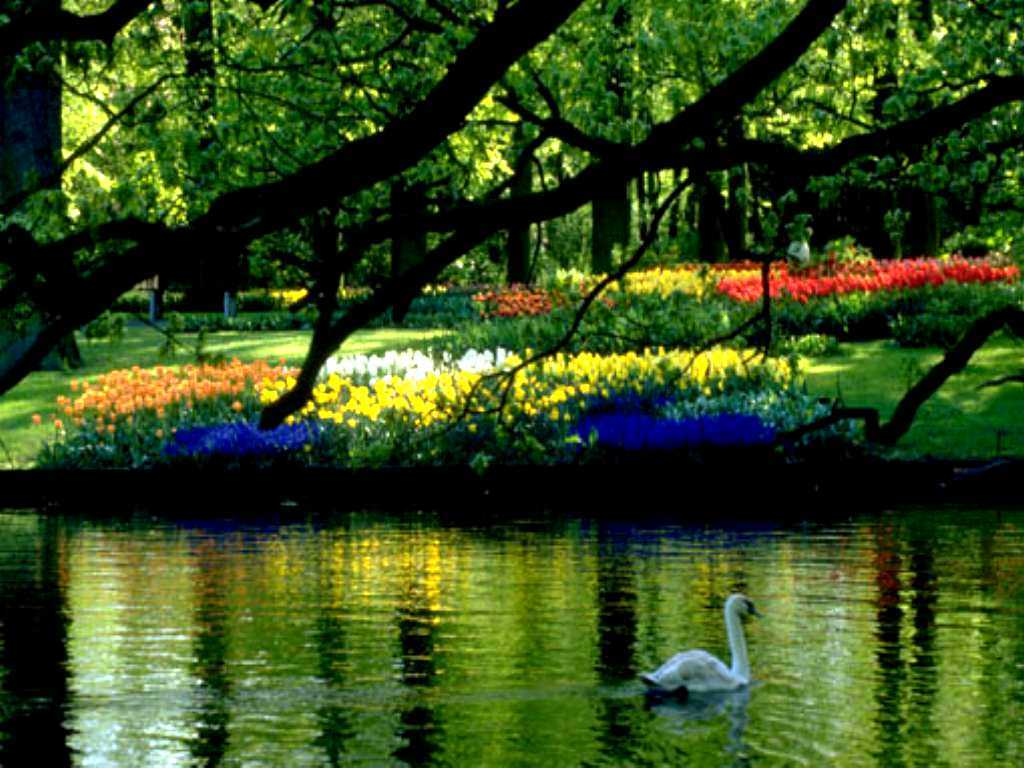 desktop wallpaper spring scenes which is under the spring wallpapers 1024x768