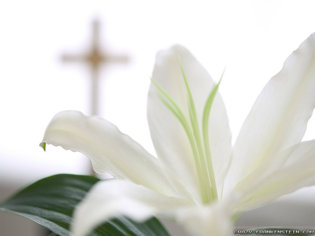 Resurrection Easter Wallpaper Images Pictures   Becuo 1024x768
