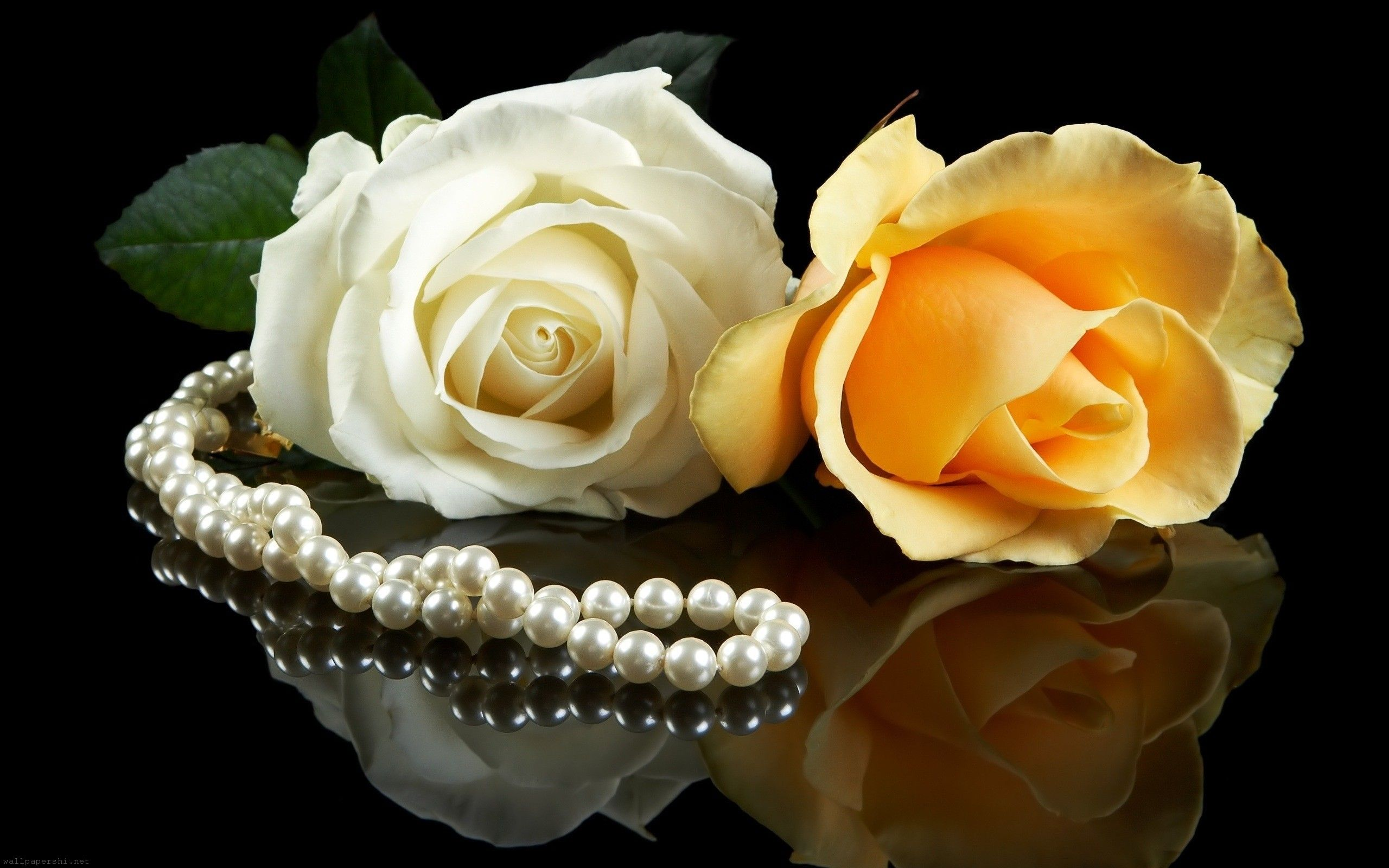 White Pearls   Colors Wallpaper 34512507 2560x1600