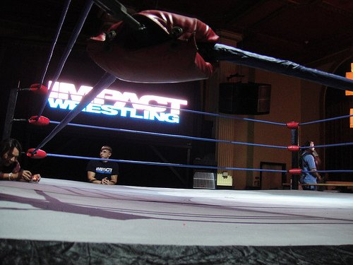 how to make a pro wrestling ring