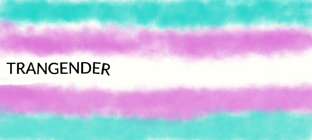 Pride Flag The Transgender Flag by gialla vs the world 1006x451