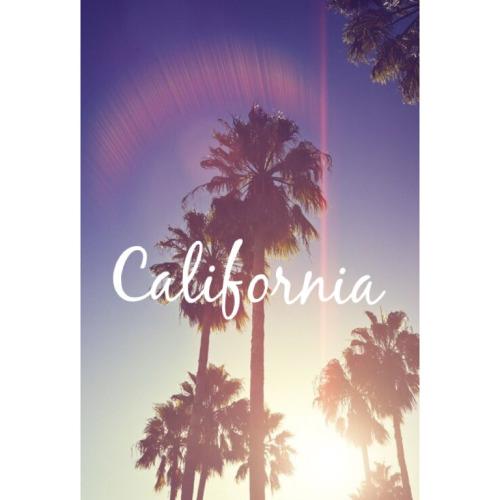 California wallpaper for all my California republic kids 500x500