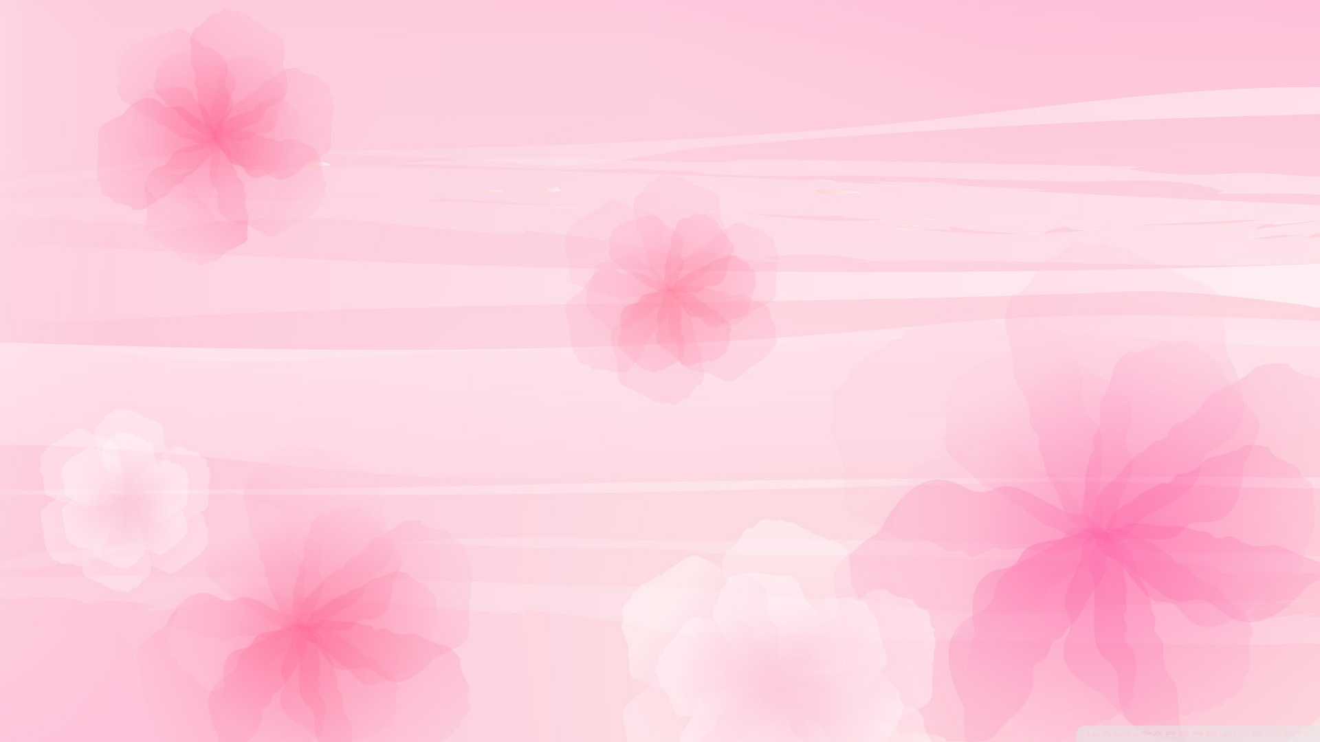 Pink Wallpaper   Colors Wallpaper 34511779 1920x1080