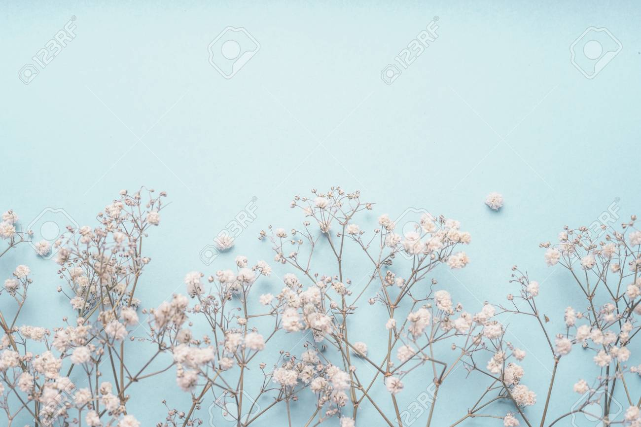 Digital Blooms May 2018 Free Desktop Wallpapers Justinecelina
