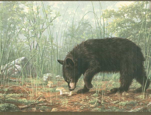 Black Bear Cubs Wallpaper Border   Lodge Outdoors Wallpaper Borders 604x460