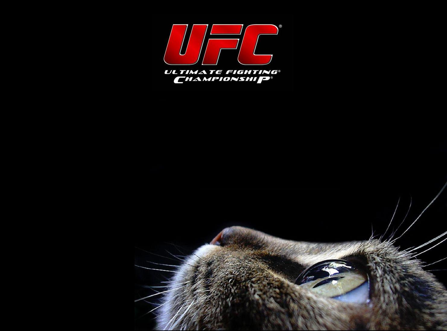 ufc ultimate fighting championship logo title cat mma mixed martial 1482x1100