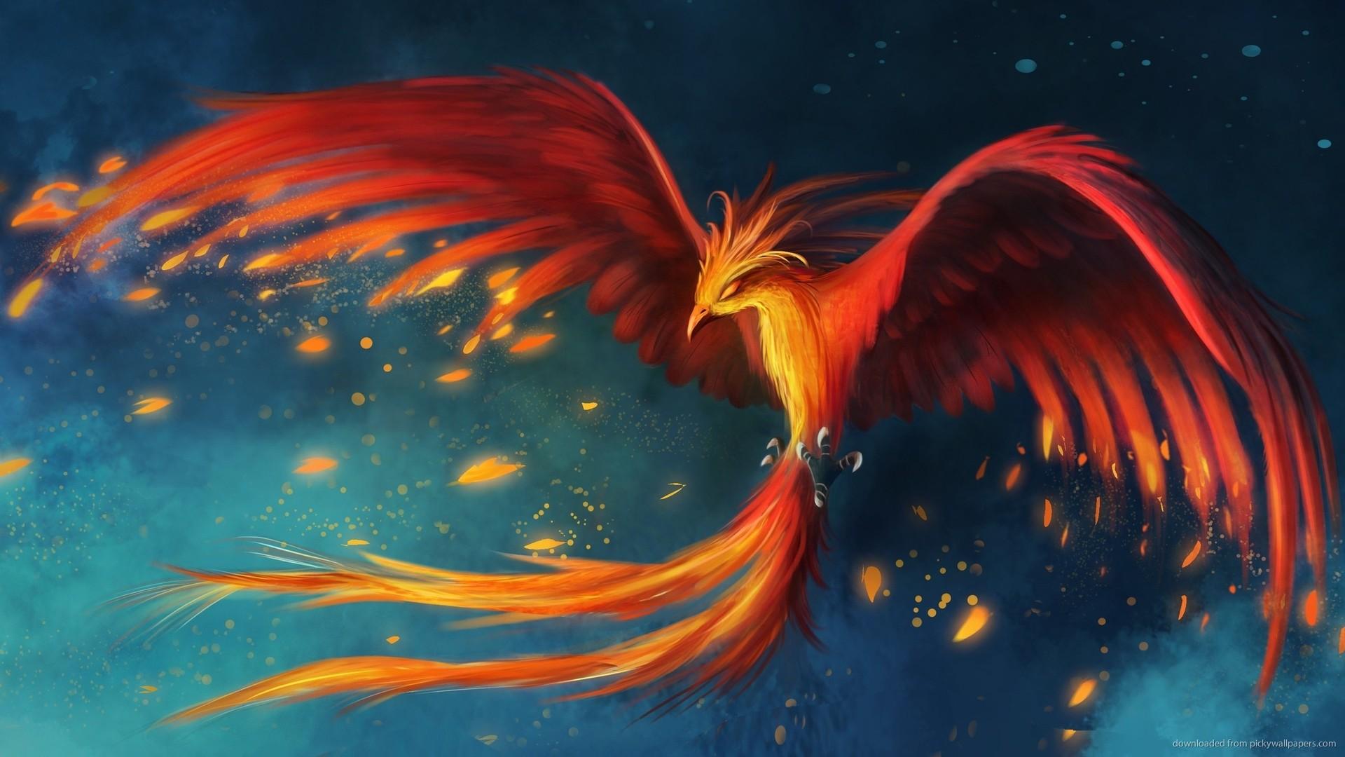 Phoenix Bird picture 1920x1080