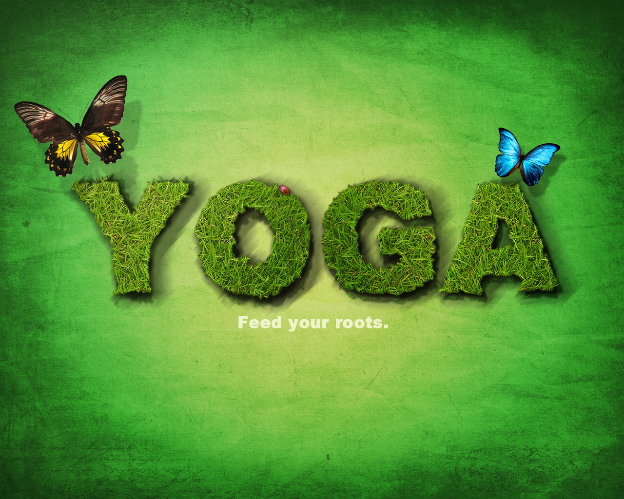 Free Download Yoga Feed Your Roots Wallpaper By Accomplicated 1280x1024 For Your Desktop Mobile Tablet Explore 41 Yoga Wallpaper Images Yoga Zen Wallpaper Free Yoga Wallpaper Downloads Yoga Desktop Wallpaper