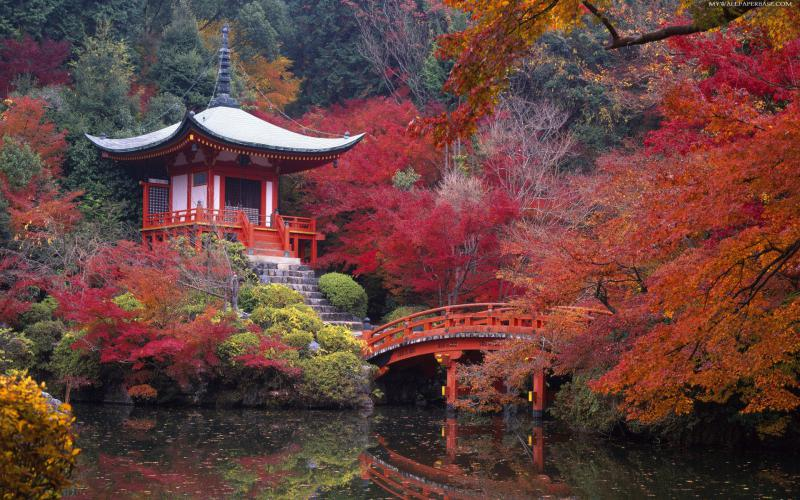 Japanese Garden 800x500