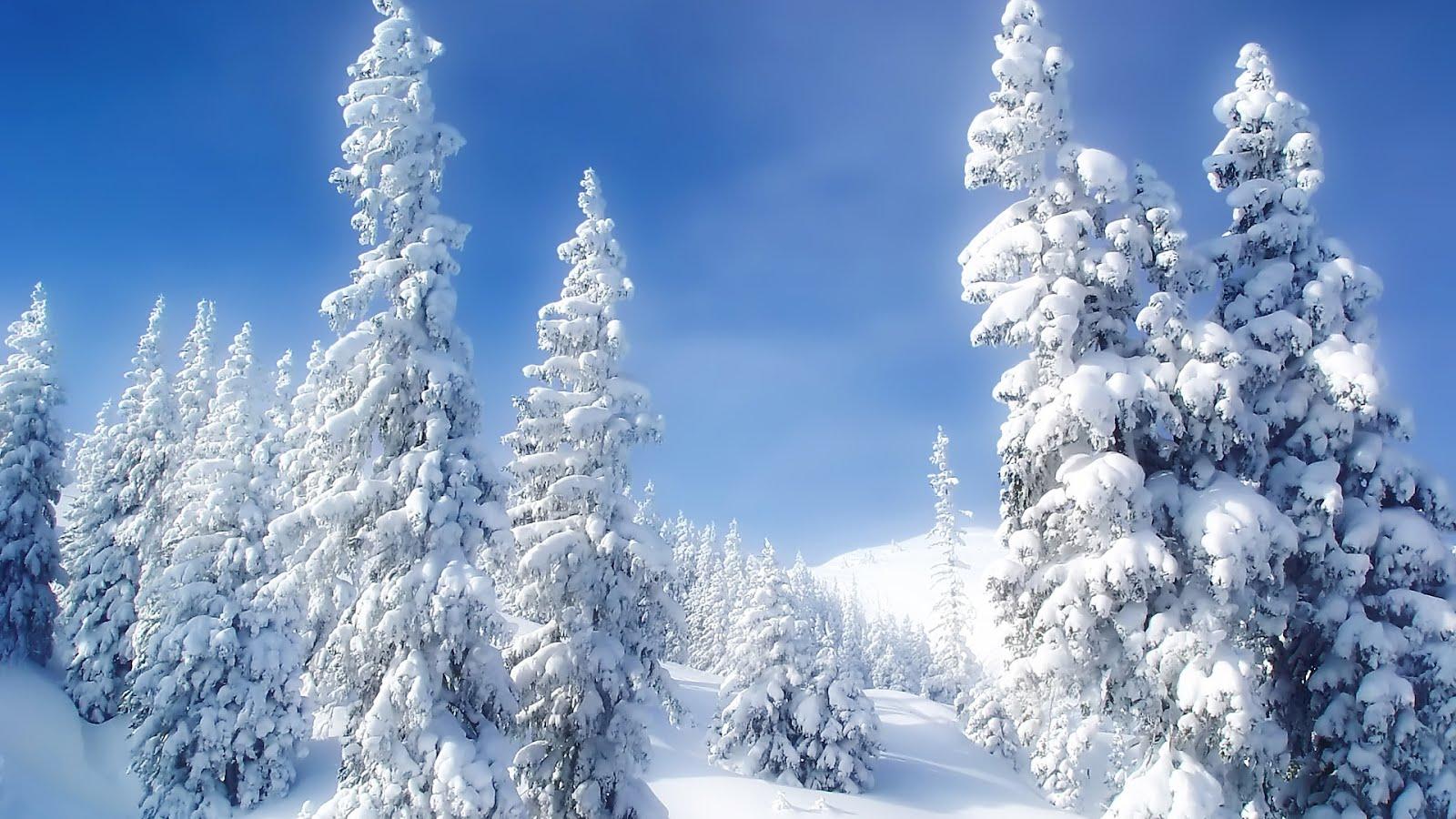 1080P Winter Wallpaper - WallpaperSafari
