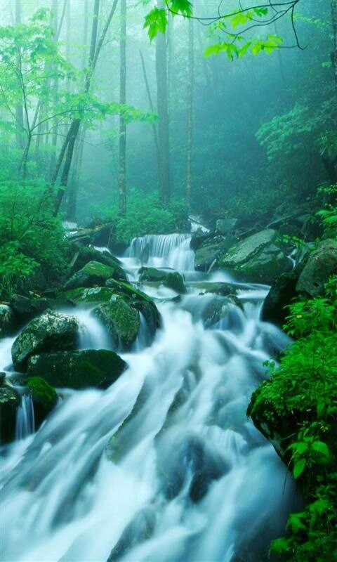 waterfall screensaver mobile live waterfall hd screensaver wallpaper 480x800