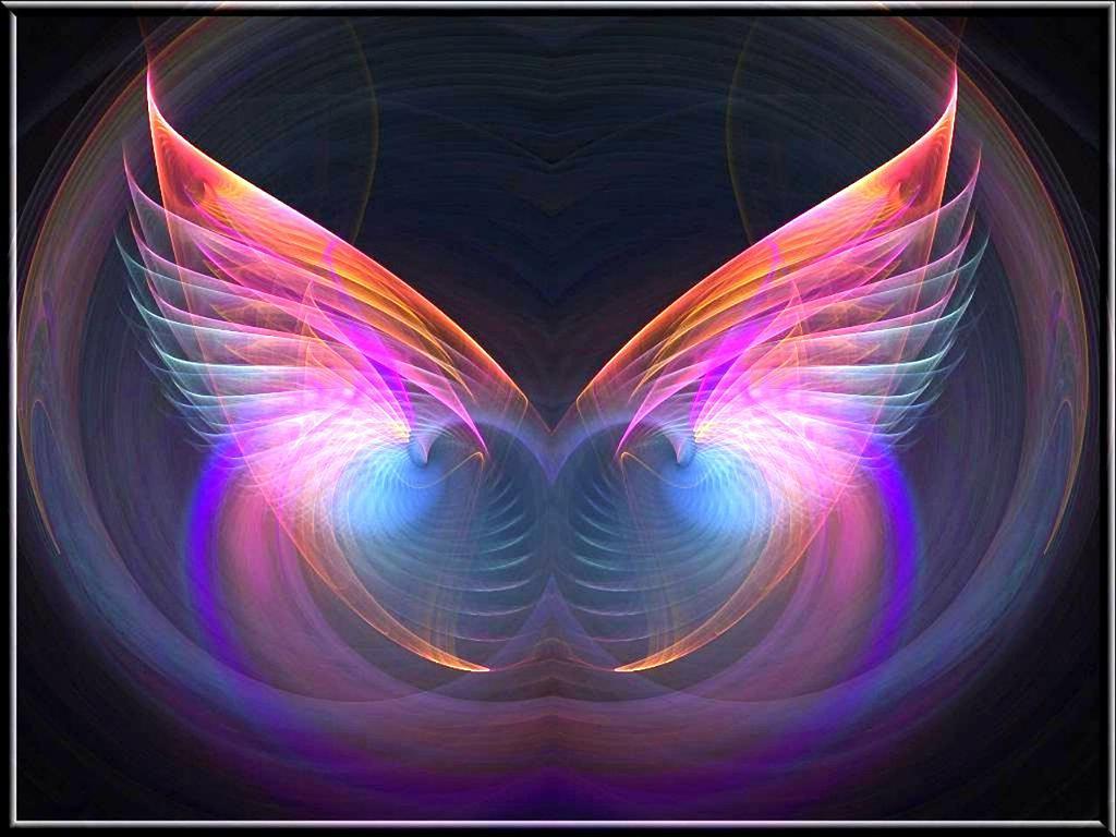 engel flgel Vektorgrafik   ForWallpapercom 1024x768