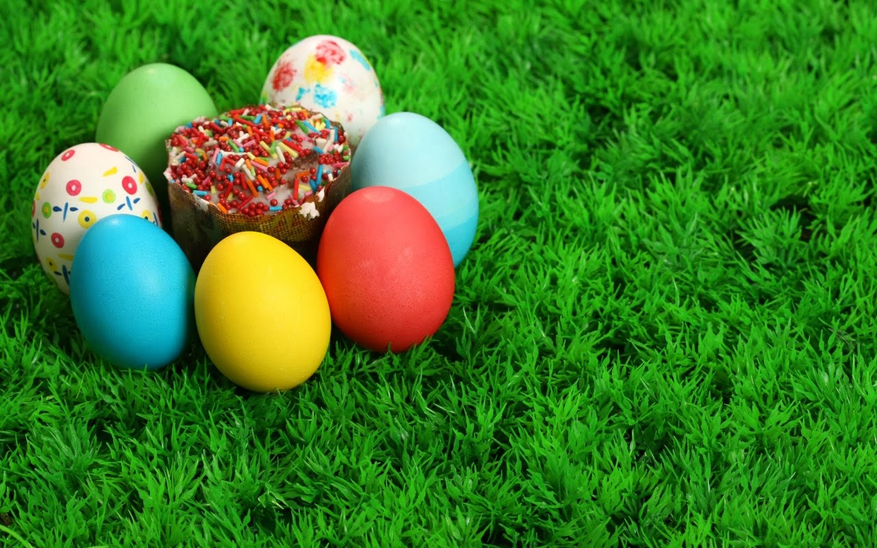 Easter Eggs And Bunnies High Definition Wallpapers 1280x800