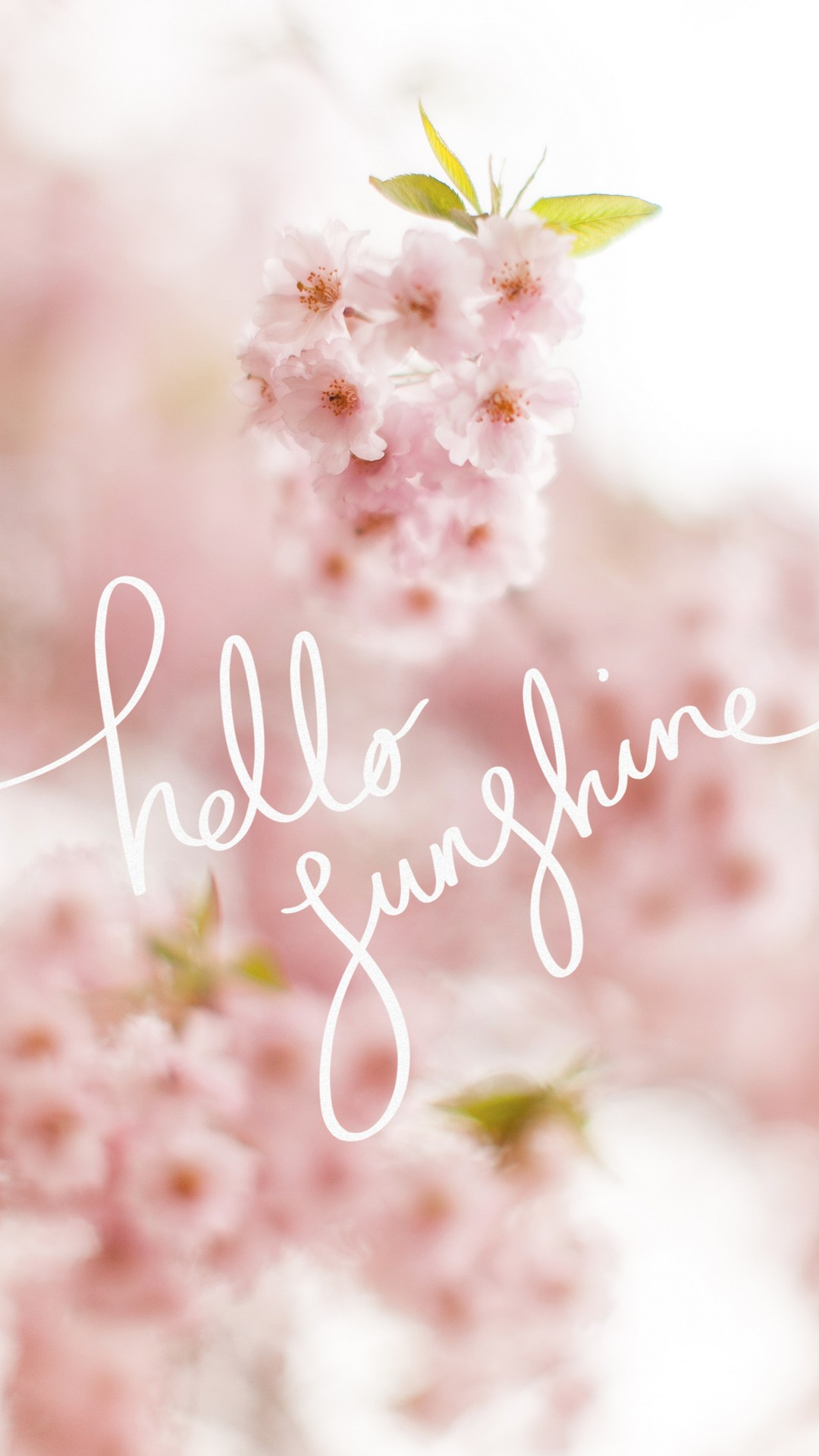 Cute Spring HD Wallpapers For Android   2020 Android Wallpapers 1080x1920