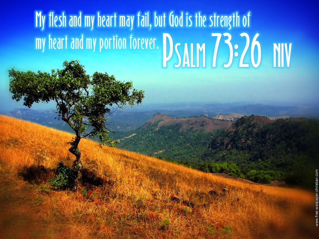 Psalm 23 Wallpaper Niv Psalm 7326 wallpaper 1024x768