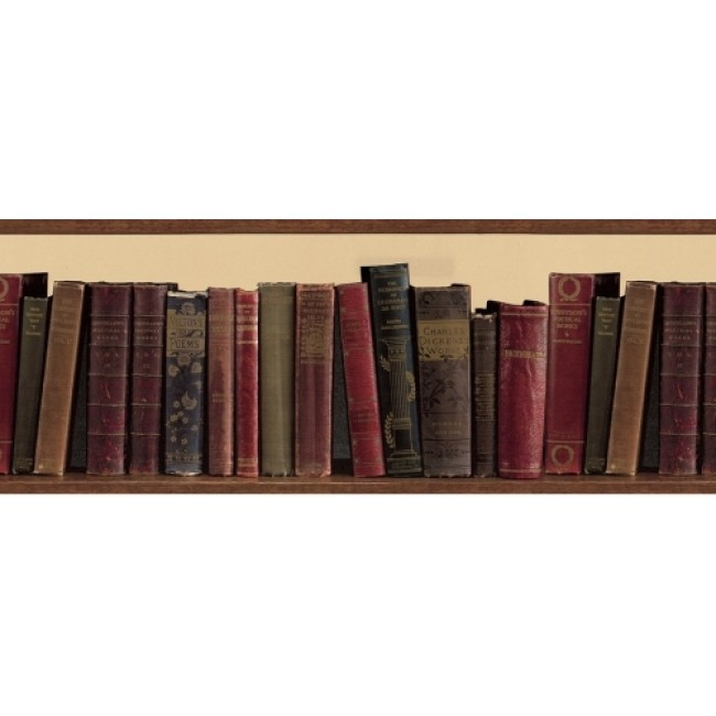 Book Shelf Library Books Wallpaper Border   All 4 Walls Wallpaper 650x650