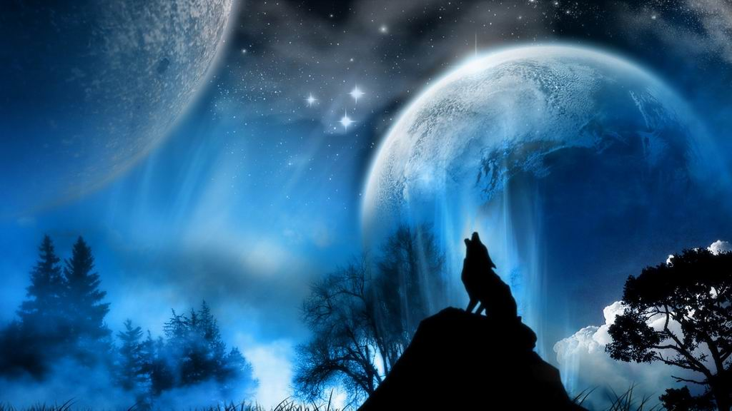Free Download Image Wolf Howling Wallpaperjpg Twilight Saga