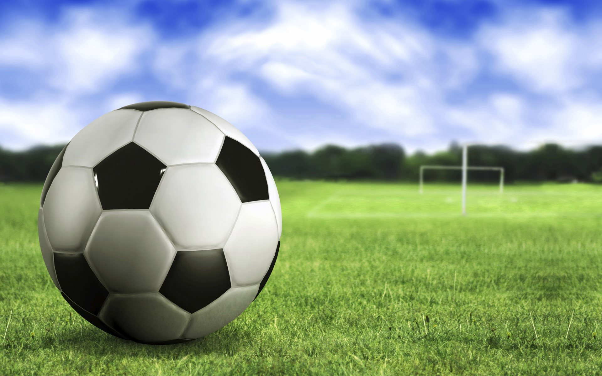 1920x1200 Soccer ball on the grass desktop PC and Mac wallpaper 1920x1200