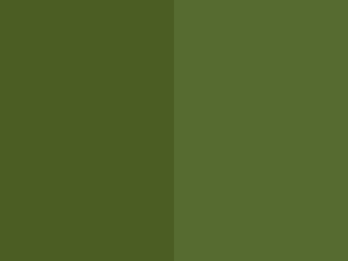 18 Top Olive Green Wallpaper Wallpaper Cool HD 1152x864