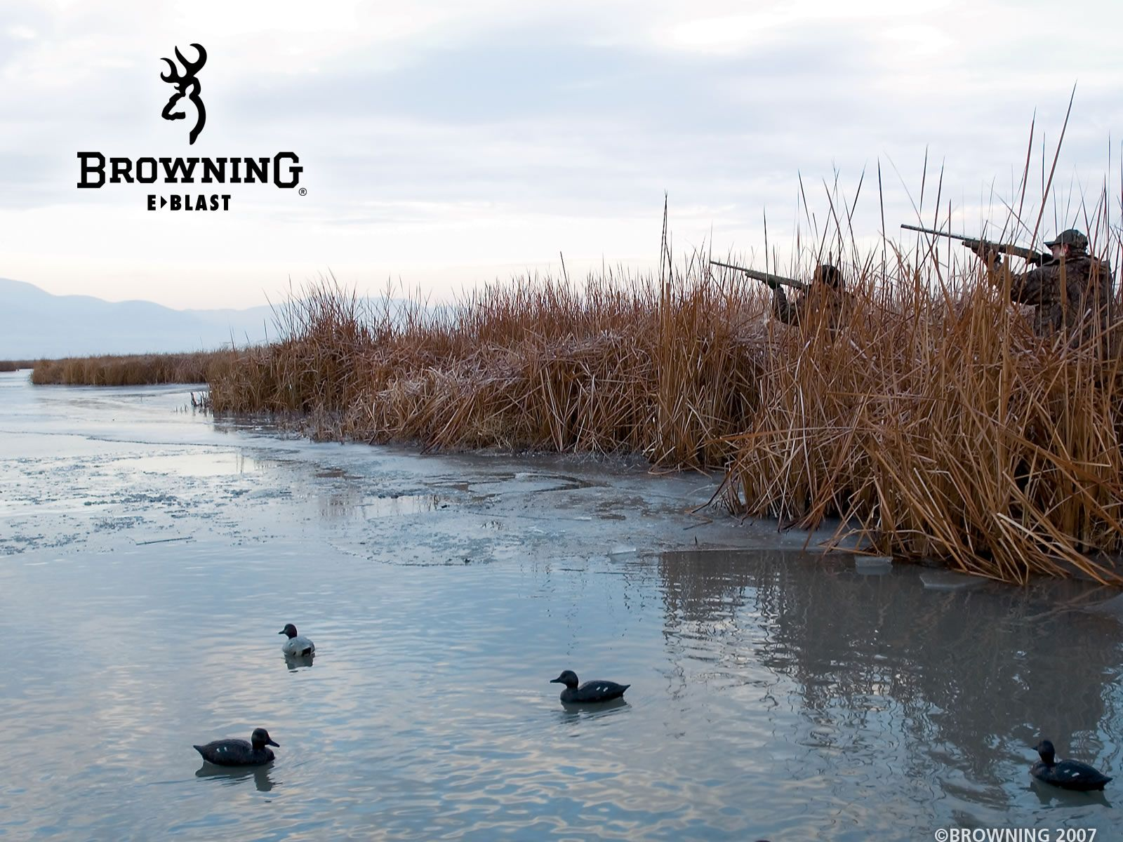 browning backgrounds 16001200 High Definition Wallpaper 1600x1200