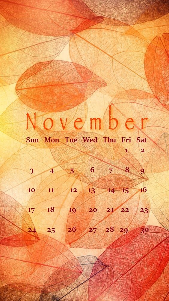 November 2019 iPhone Calendar Wallpaper 564x1000