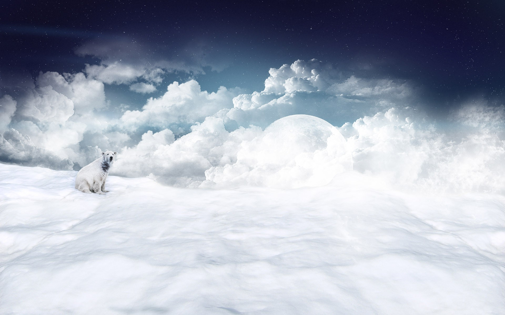 White 1900x1200   Wallpaper High Definition High Quality Widescreen 1920x1200