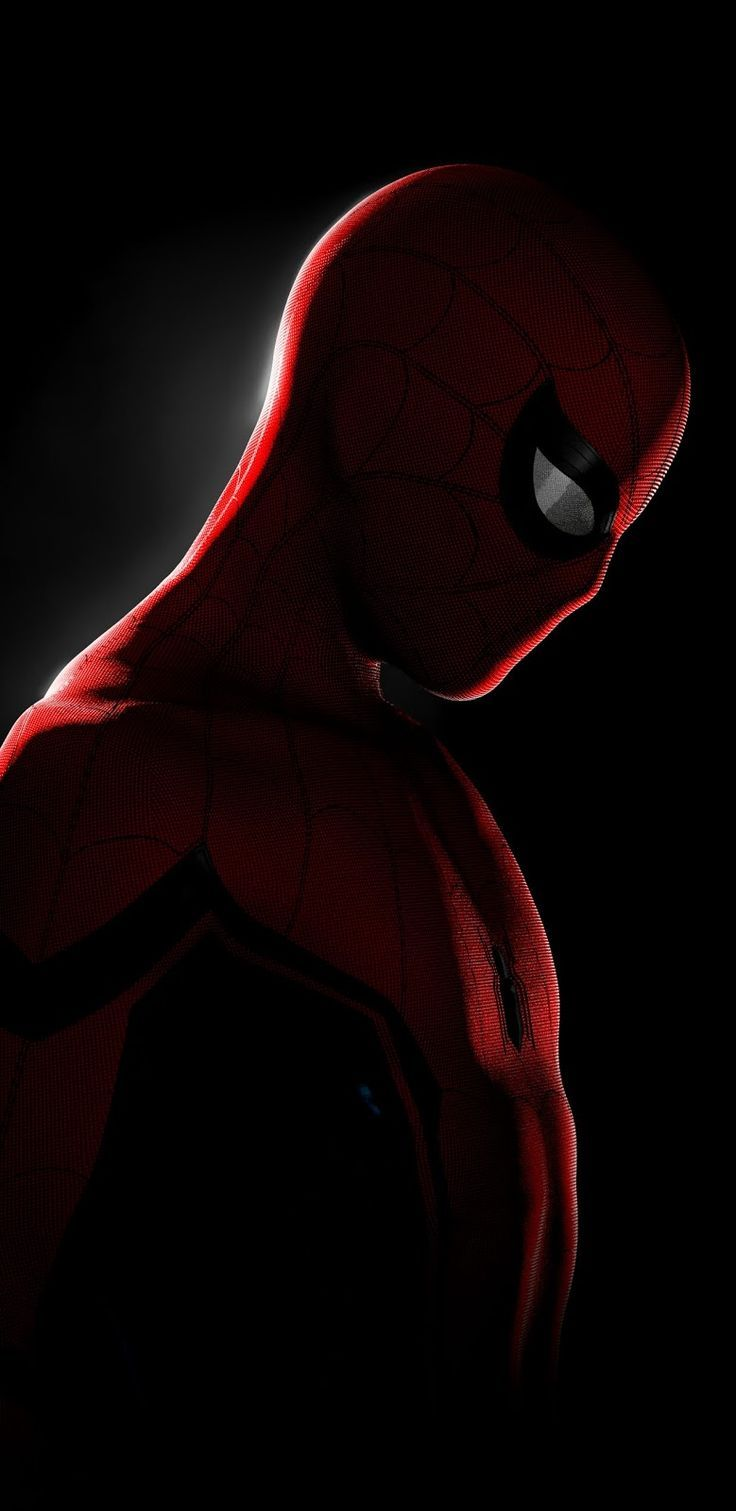 Spiderman In the Dark Marvel wallpaper Marvel phone wallpaper 736x1511