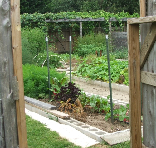 24 Fantastic Backyard Vegetable Garden Ideas: Vegetable Gardening Wallpaper