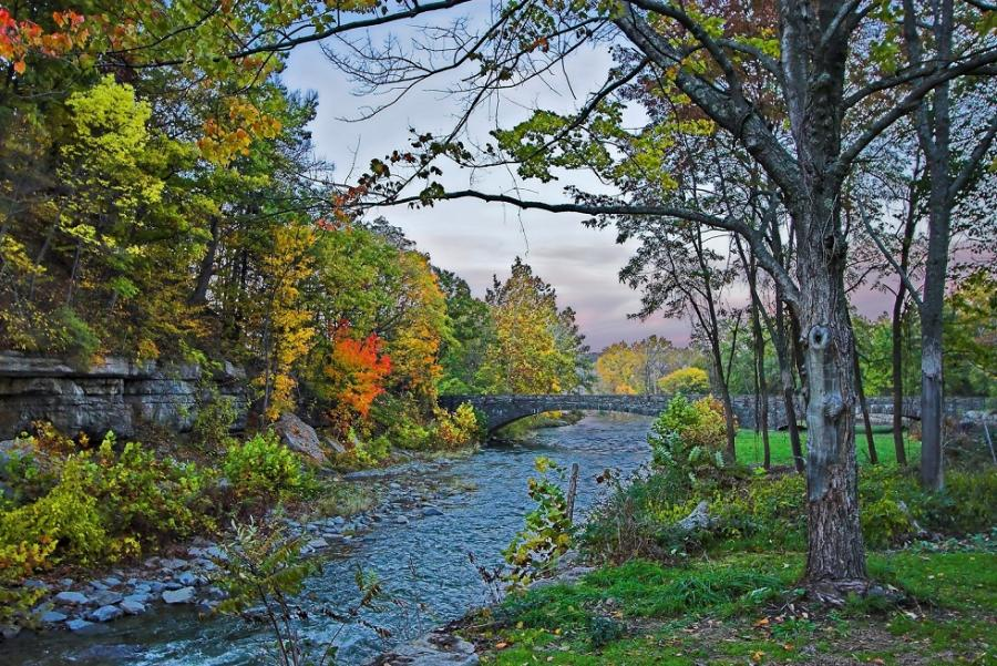 Trout Stream Wallpaper Trout stream upstate new york 900x601