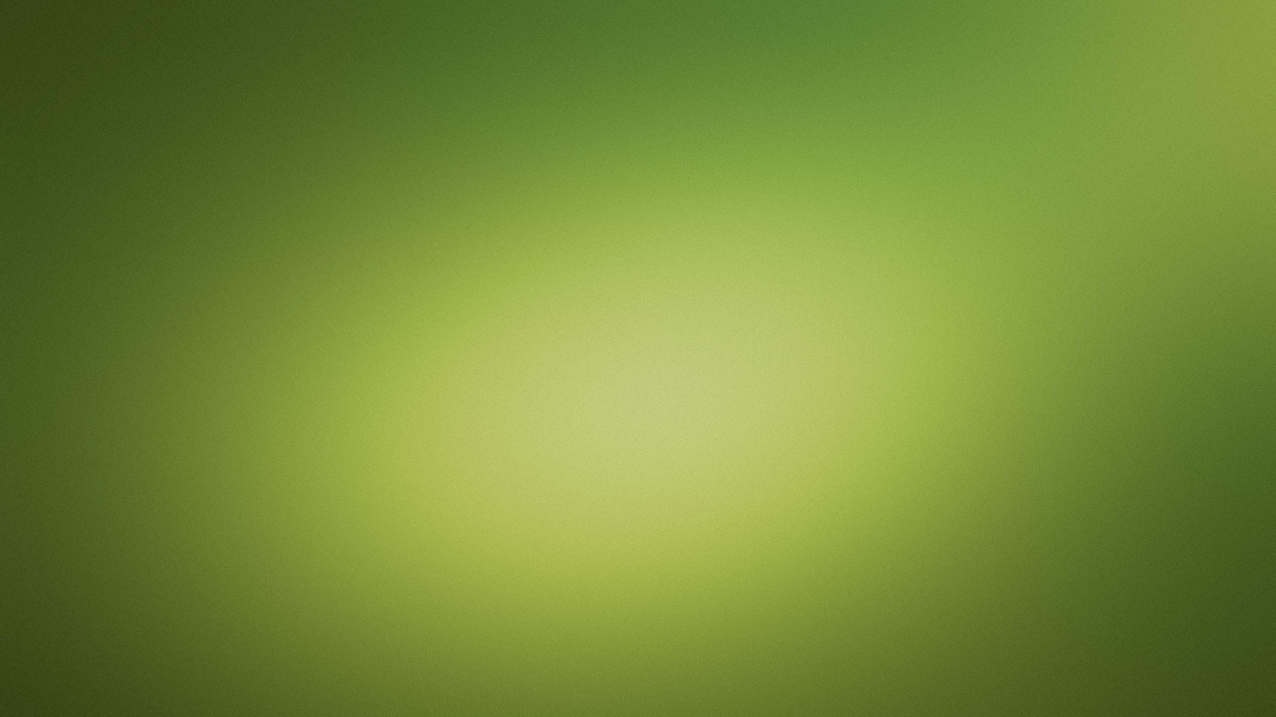 Light Green Background Desktop Wallpaper 2560x1440