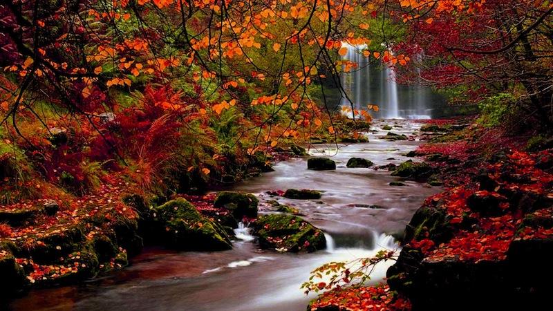 Nature Landscapes Hd Wallpaper For Autumn Falls 800x450