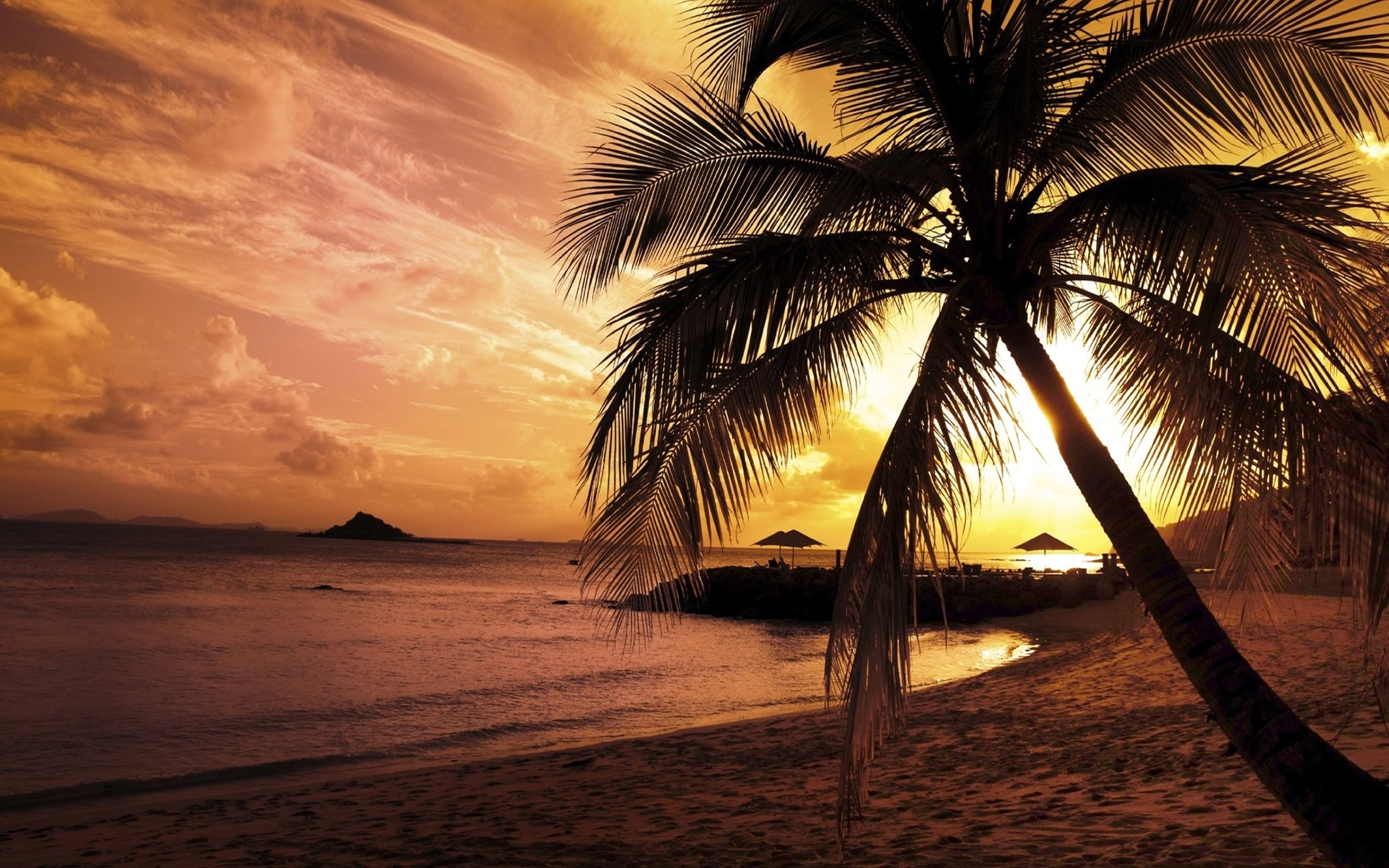 palm trees sunset hd wallpapers palm trees sunset hd wallpapers 1920x1200