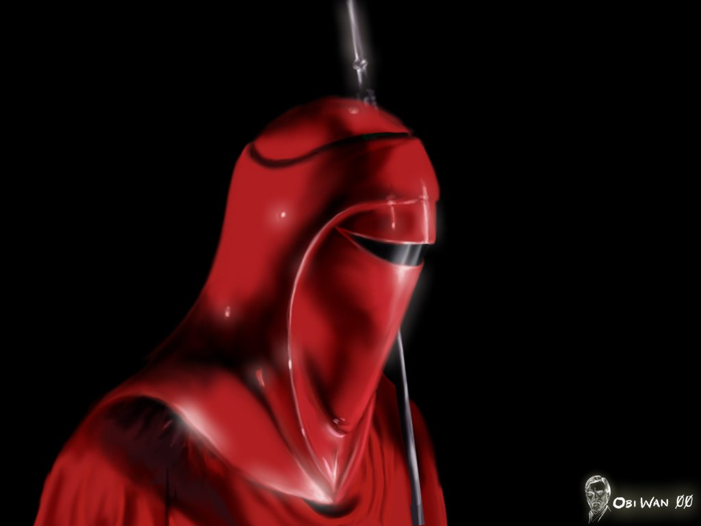Star Wars Imperial Royal Guard Art   Hot Girls Wallpaper 1024x768