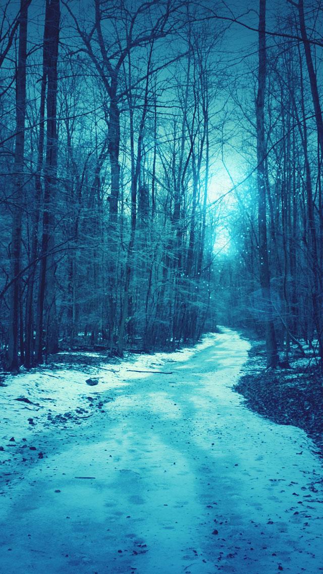Winter road iPhone 5s Wallpaper Download iPhone Wallpapers iPad 640x1136